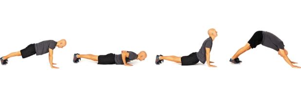 Stretching exercise for lower back and chest