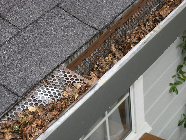 take care of home repairs like gutter cleaning before contributing to emergency fund