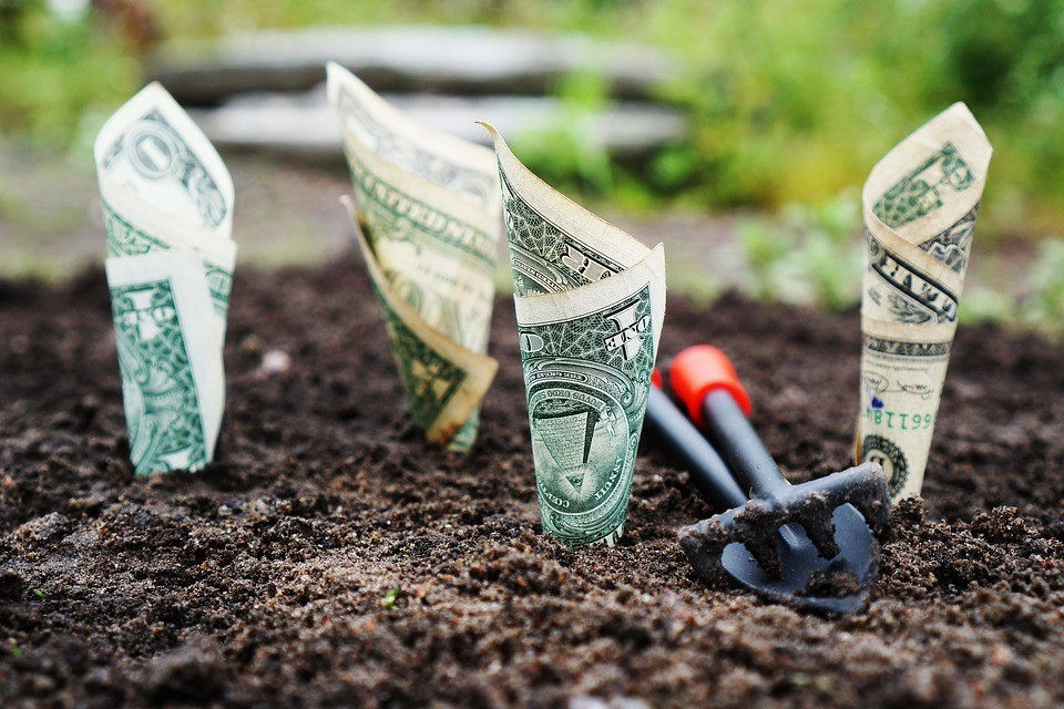 four American dollar bills rolled up in soil with a mini trowel and shovel